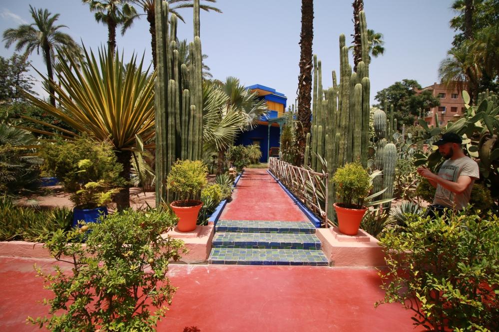 Jardin Majorelle's garden